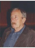 Визильтер Вилен Семенович